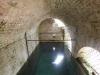 La Fonte del Piano a Cossignano veniva in passato utilizzata per l'abbeveraggio del bestiame