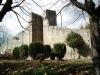 Mura antiche medioevali