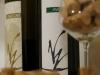 Zaccarì e Avora due vini dell'Azienda Vigneti Vallorani a Colli del Tronto